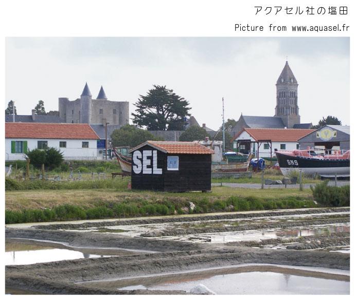 塩田 アクアセル社 フランス (Salt field of Aquasel France)