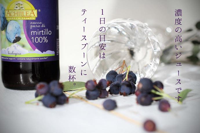 ワイルド・ブルーベリージュース100%