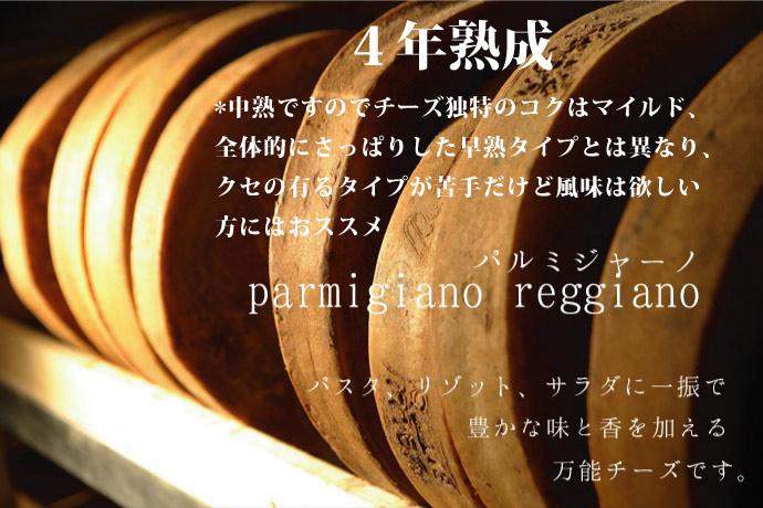 Bonat(ボナーティ) パルミジャーノ・レッジャーノ 4年熟成 100g