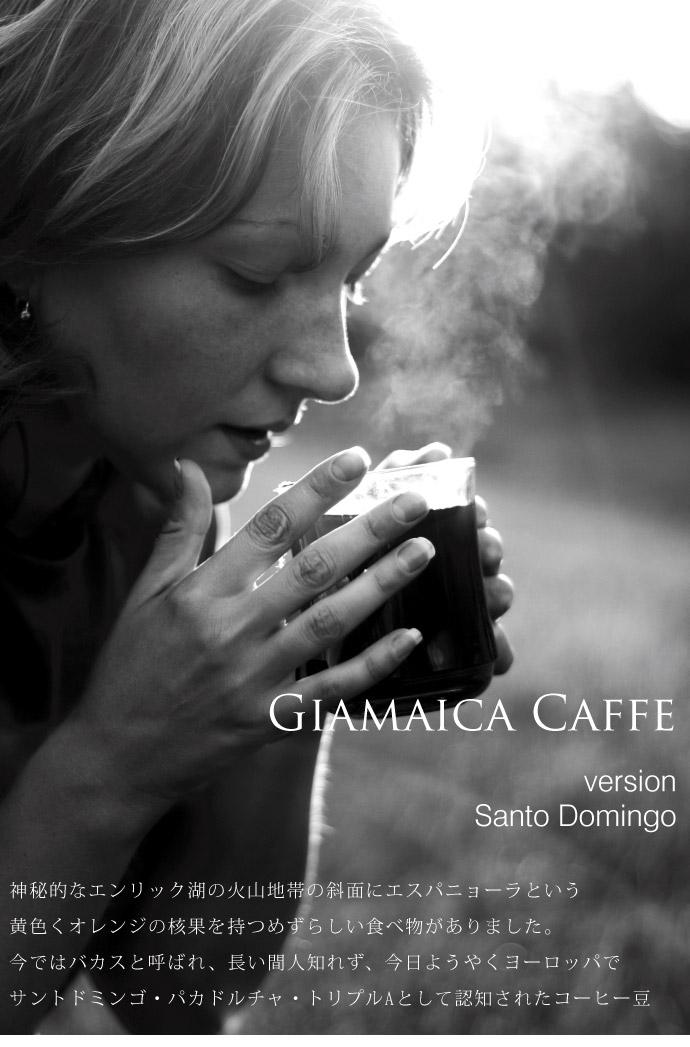 Santo Domingo by Giamaica caffe (サントドミンゴ / ジャマイカ・カフェ) タイトル