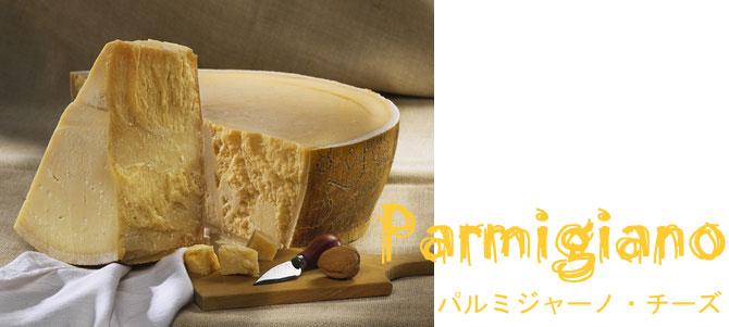 パルミジャーノチーズ|アレスピット